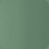 Slika prikazuje barvo Fern Green